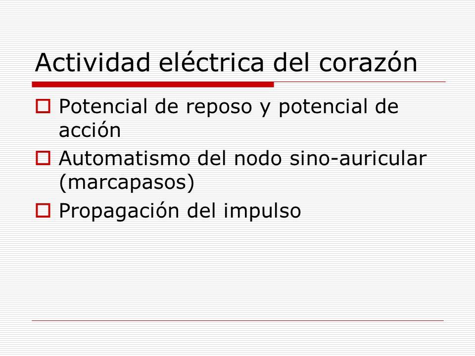 Actividad eléctrica del corazón Potencial de reposo y potencial de acción Automatismo del nodo sino-auricular (marcapasos) Propagación del impulso