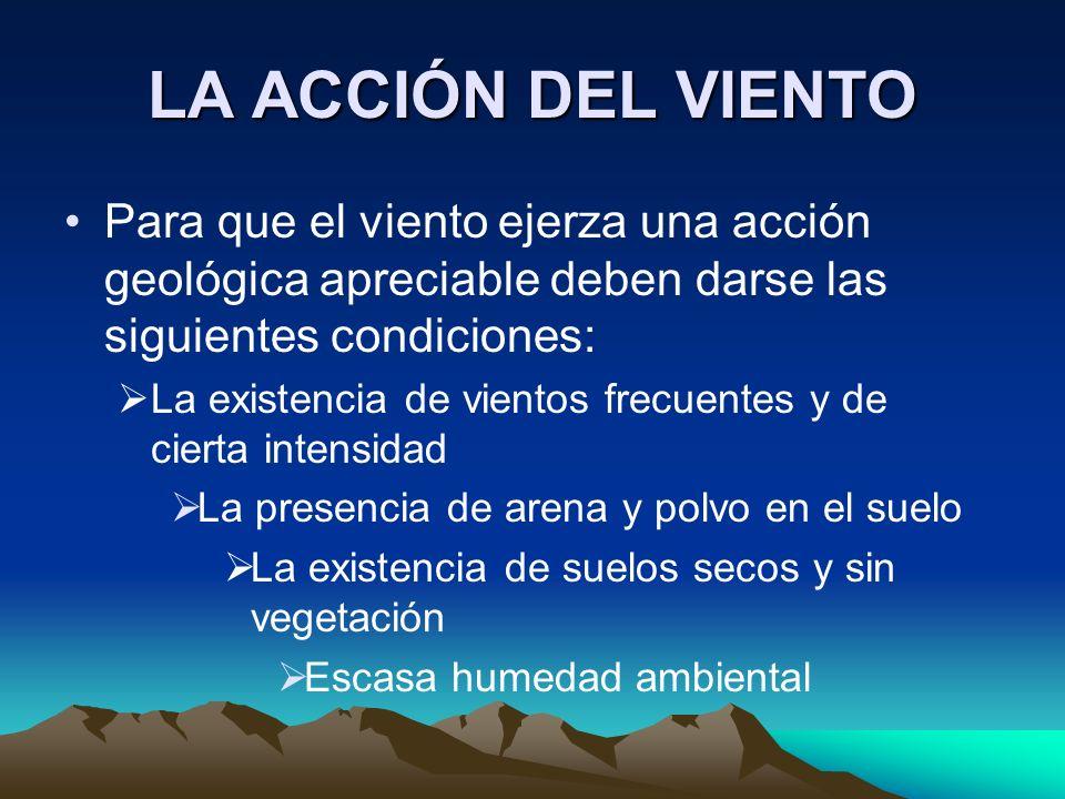 LA ACCIÓN DEL VIENTO Para que el viento ejerza una acción geológica apreciable deben darse las siguientes condiciones: La existencia de vientos frecue
