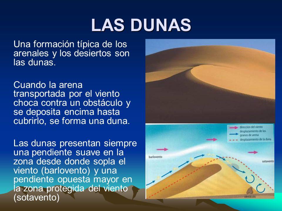 LAS DUNAS Una formación típica de los arenales y los desiertos son las dunas. Cuando la arena transportada por el viento choca contra un obstáculo y s