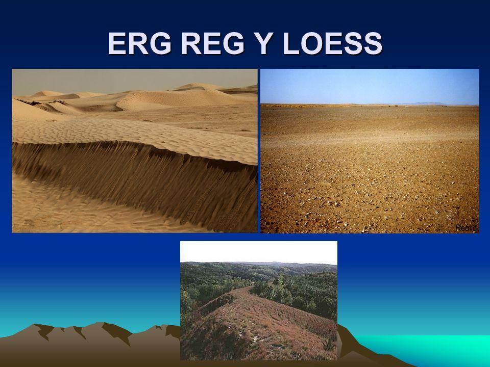 ERG REG Y LOESS