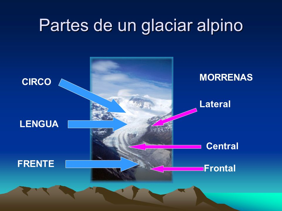 Partes de un glaciar alpino CIRCO LENGUA FRENTE MORRENAS Lateral Central Frontal