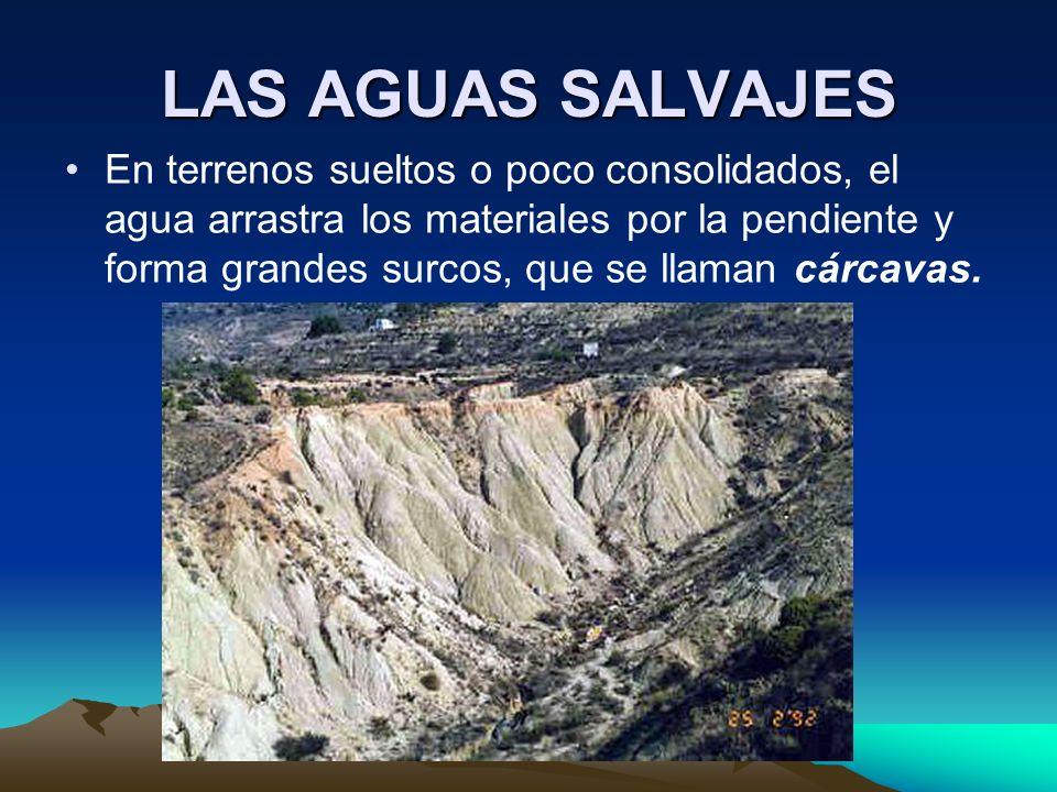 LAS AGUAS SALVAJES En terrenos sueltos o poco consolidados, el agua arrastra los materiales por la pendiente y forma grandes surcos, que se llaman cár