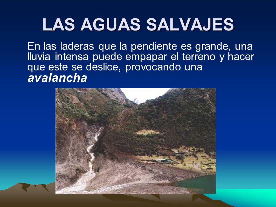 LAS AGUAS SALVAJES En las laderas que la pendiente es grande, una lluvia intensa puede empapar el terreno y hacer que este se deslice, provocando una