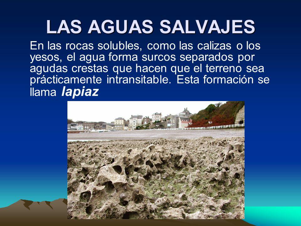 LAS AGUAS SALVAJES En las rocas solubles, como las calizas o los yesos, el agua forma surcos separados por agudas crestas que hacen que el terreno sea