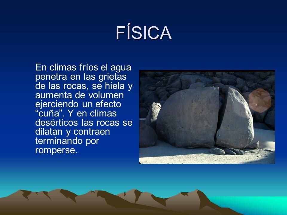 FÍSICA En climas fríos el agua penetra en las grietas de las rocas, se hiela y aumenta de volumen ejerciendo un efecto cuña. Y en climas desérticos la