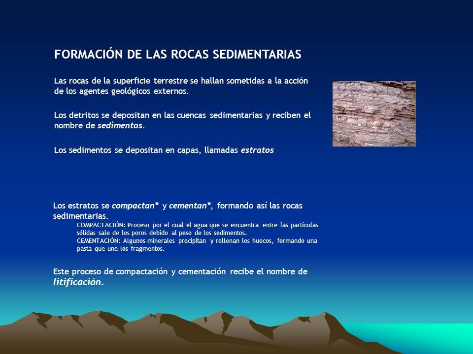 FORMACIÓN DE LAS ROCAS SEDIMENTARIAS Las rocas de la superficie terrestre se hallan sometidas a la acción de los agentes geológicos externos. Los detr
