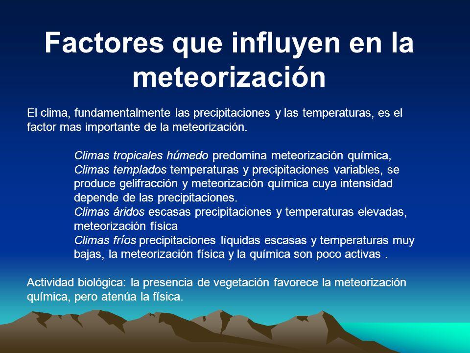 Factores que influyen en la meteorización El clima, fundamentalmente las precipitaciones y las temperaturas, es el factor mas importante de la meteori
