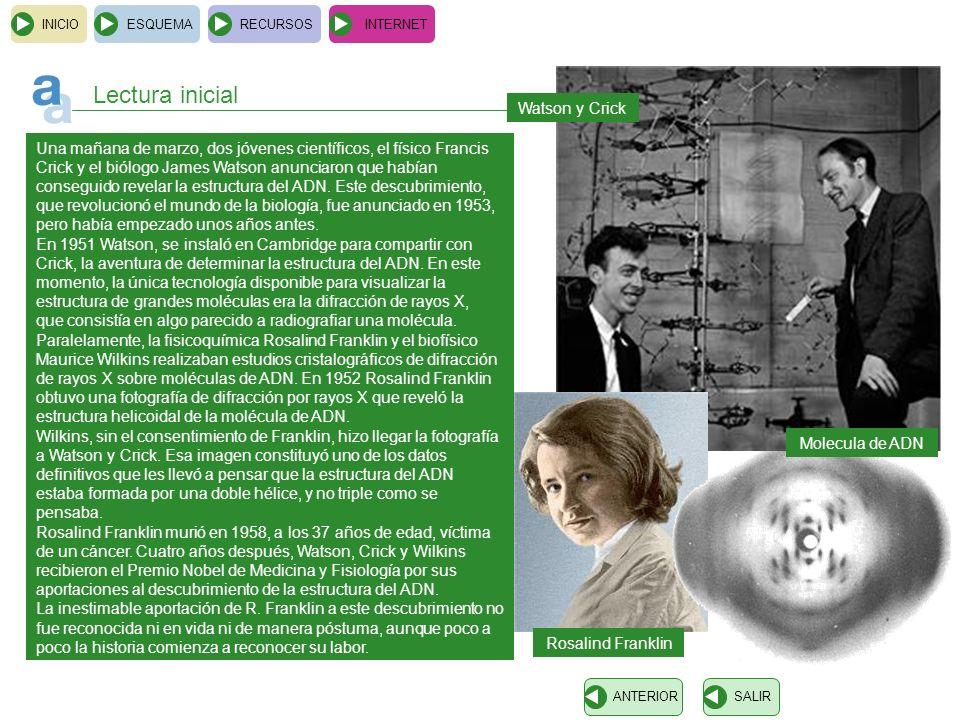 INICIOESQUEMARECURSOSINTERNET Lectura inicial Una mañana de marzo, dos jóvenes científicos, el físico Francis Crick y el biólogo James Watson anunciar