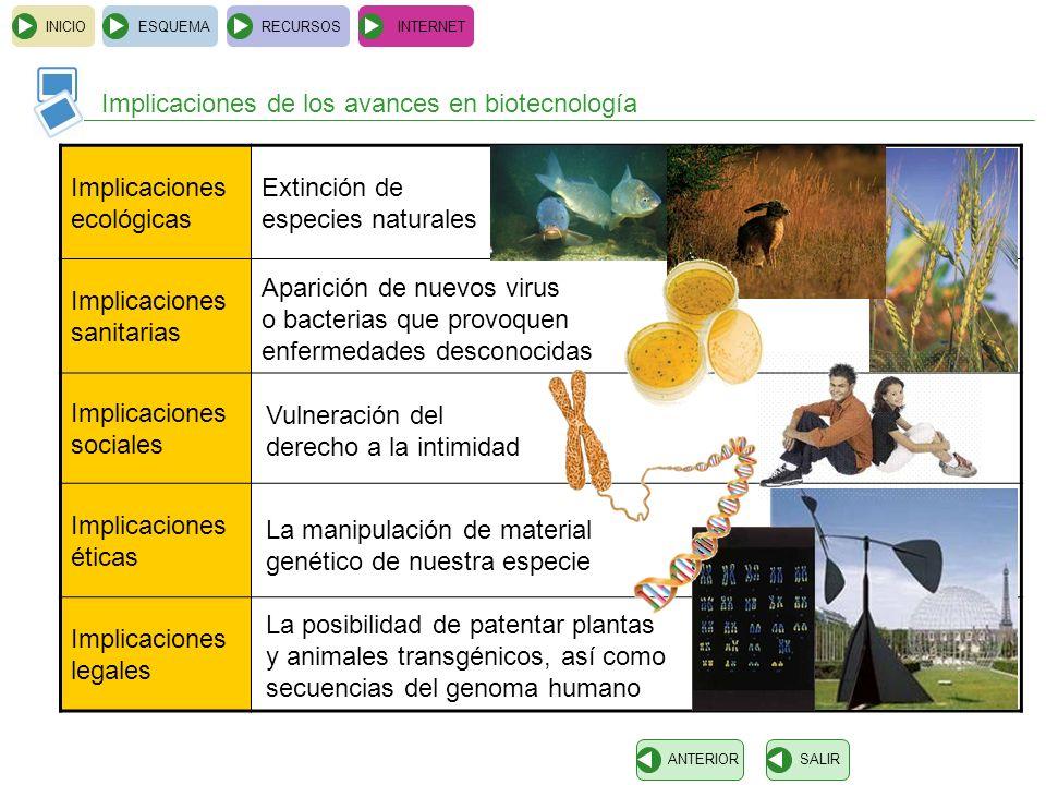 INICIOESQUEMARECURSOSINTERNET Implicaciones de los avances en biotecnología SALIRANTERIOR Implicaciones ecológicas Implicaciones sanitarias Implicacio
