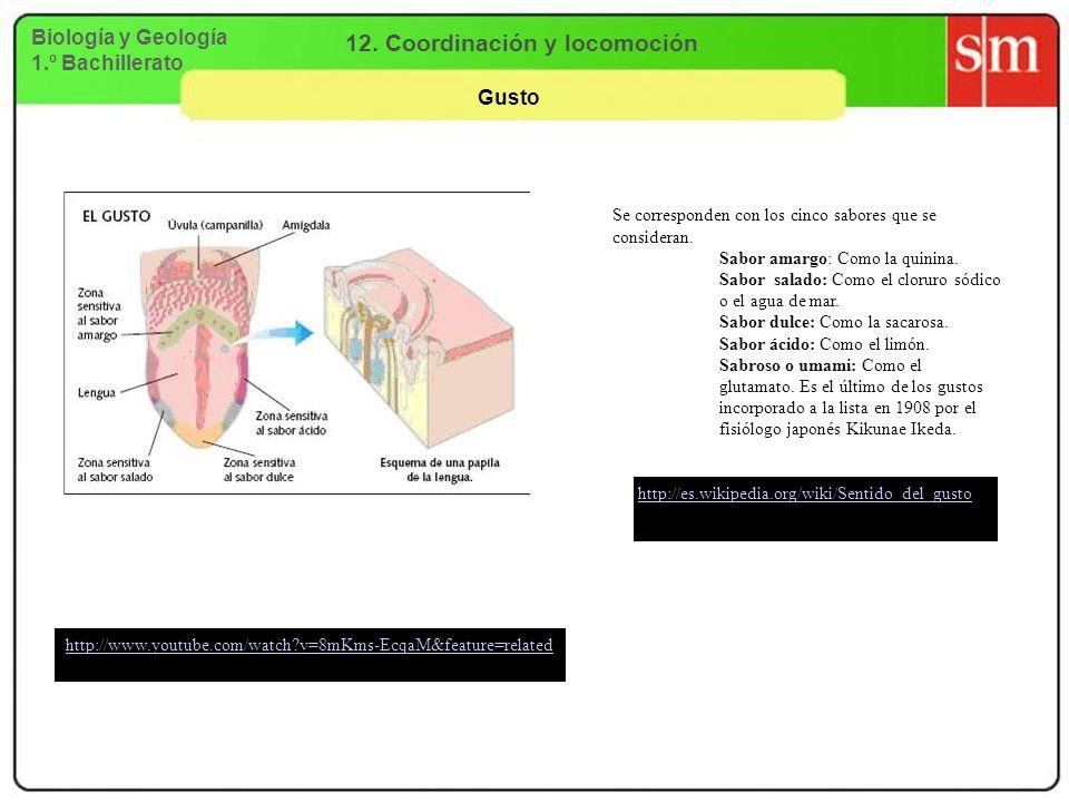 Biología y Geología 1.º Bachillerato 12. Coordinación y locomoción Gusto http://www.youtube.com/watch?v=8mKms-EcqaM&feature=related http://es.wikipedi