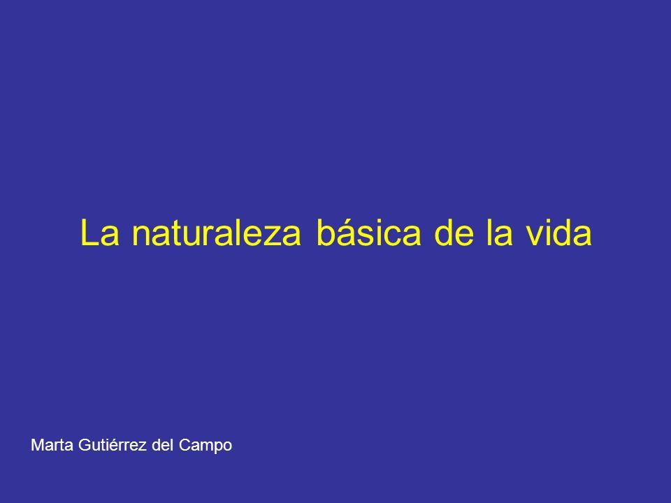 La naturaleza básica de la vida Marta Gutiérrez del Campo