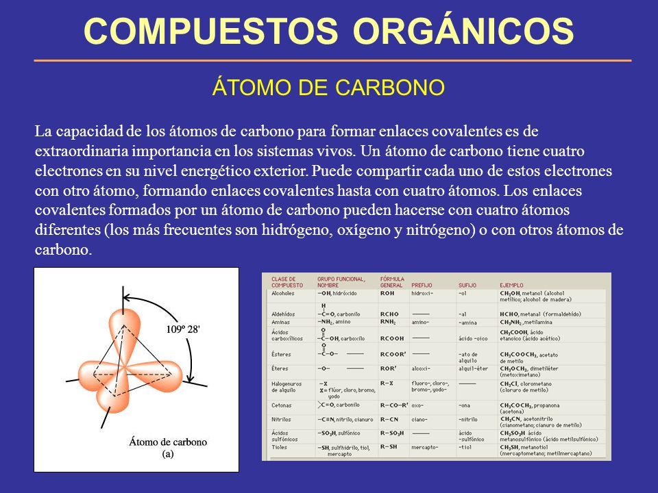 COMPUESTOS ORGÁNICOS ÁTOMO DE CARBONO La capacidad de los átomos de carbono para formar enlaces covalentes es de extraordinaria importancia en los sis