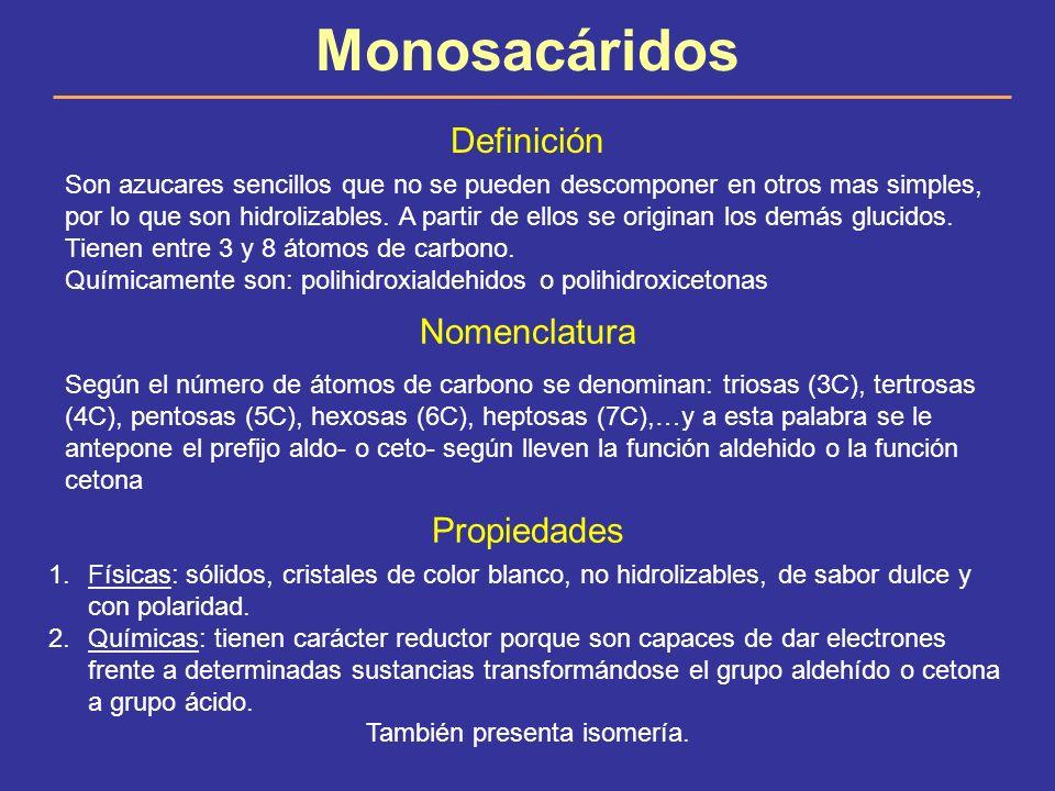 Monosacáridos Definición Son azucares sencillos que no se pueden descomponer en otros mas simples, por lo que son hidrolizables. A partir de ellos se