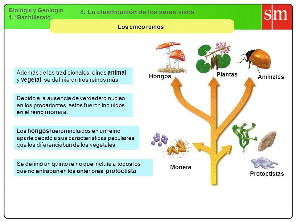 Biología y Geología 1.º Bachillerato 8. La clasificación de los seres vivos Los cinco reinos Debido a la ausencia de verdadero núcleo en los procarion