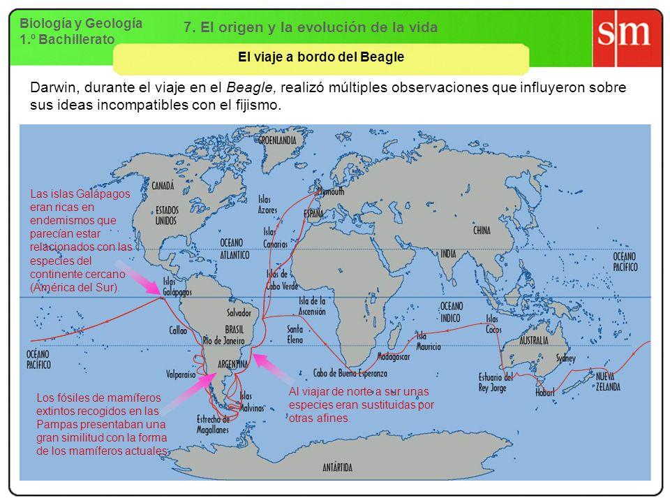 Biología y Geología 1.º Bachillerato 7. El origen y la evolución de la vida El viaje a bordo del Beagle Darwin, durante el viaje en el Beagle, realizó