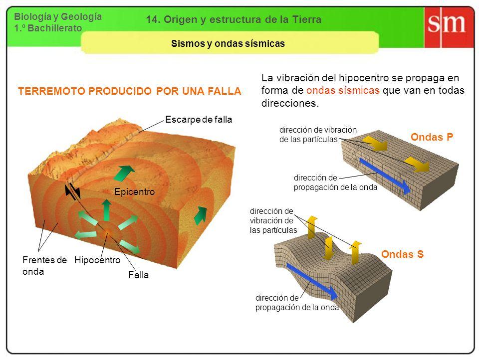 Biología y Geología 1.º Bachillerato 14. Origen y estructura de la Tierra Sismos y ondas sísmicas Ondas P Ondas S Escarpe de falla Epicentro Hipocentr