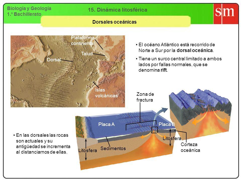 Biología y Geología 1.º Bachillerato 15. Dinámica litosférica Dorsales oceánicas Plataforma continental Dorsal Talud Islas volcánicas El océano Atlánt