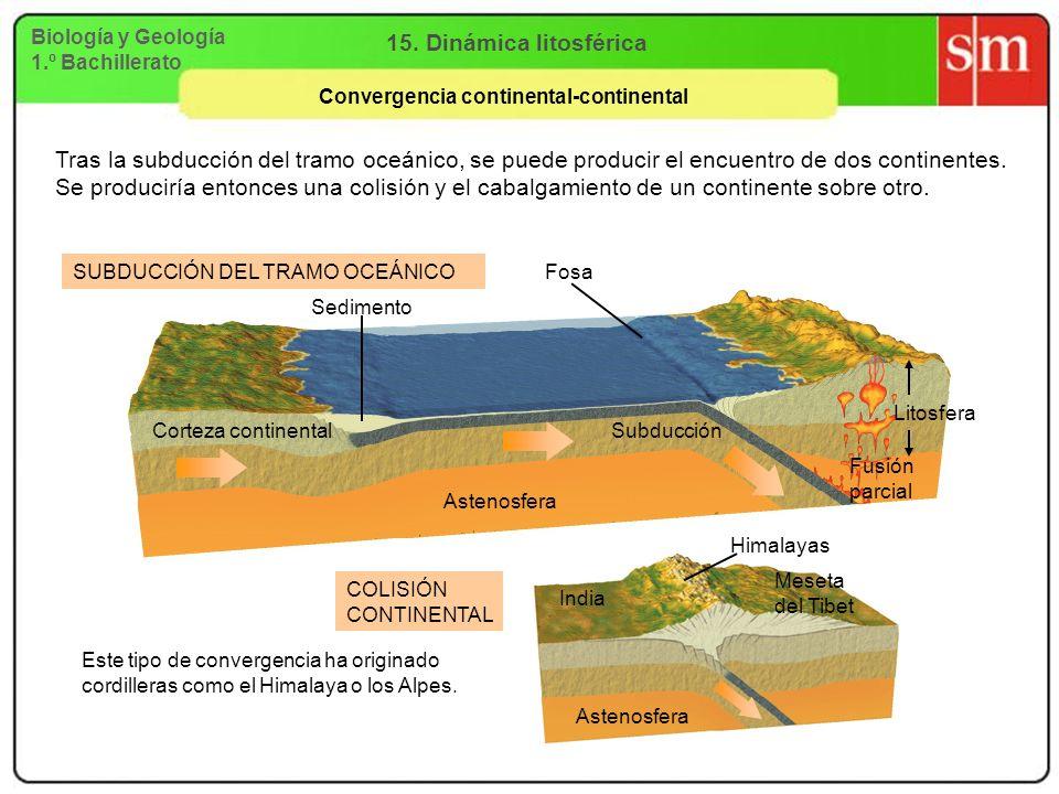 Biología y Geología 1.º Bachillerato 15. Dinámica litosférica Convergencia continental-continental Astenosfera Fusión parcial Fosa Tras la subducción