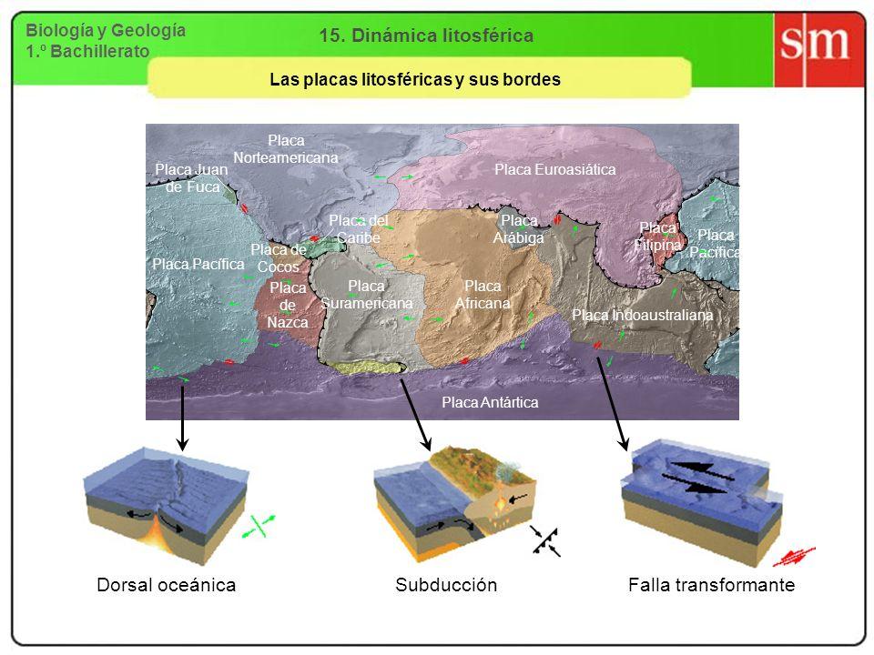 Biología y Geología 1.º Bachillerato 15. Dinámica litosférica Las placas litosféricas y sus bordes Subducción Falla transformante Placa Norteamericana