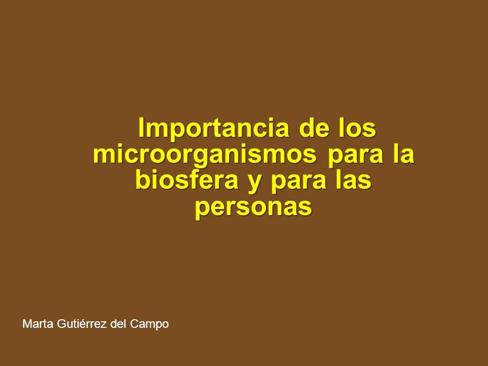 Importancia de los microorganismos para la biosfera y para las personas Importancia de los microorganismos para la biosfera y para las personas Marta