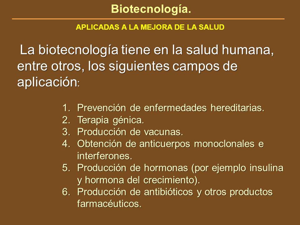 Biotecnología. APLICADAS A LA MEJORA DE LA SALUD La biotecnología tiene en la salud humana, entre otros, los siguientes campos de aplicación : La biot