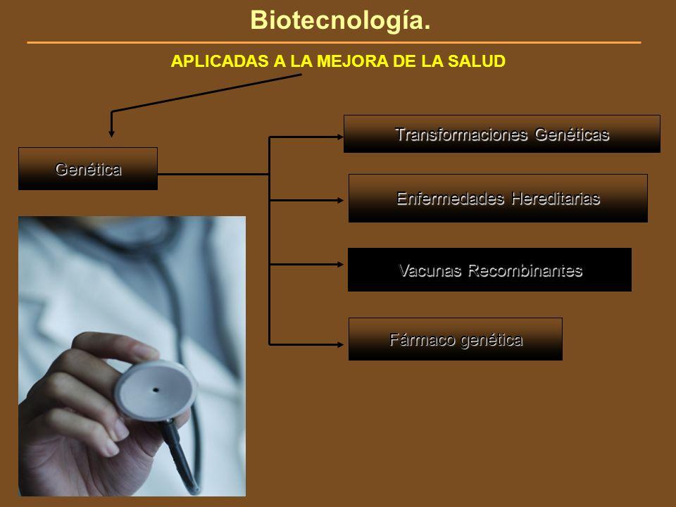Biotecnología. APLICADAS A LA MEJORA DE LA SALUD Genética Fármaco genética Enfermedades Hereditarias Transformaciones Genéticas Vacunas Recombinantes