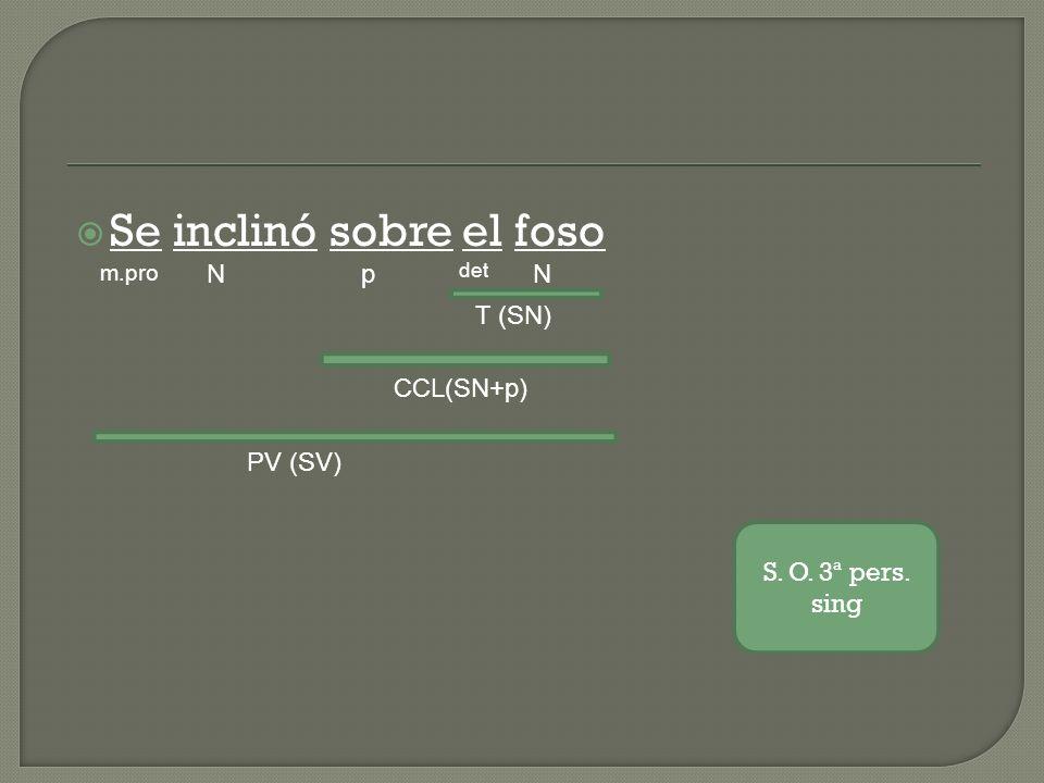 Se inclinó sobre el foso m.pro Np det N T (SN) CCL(SN+p) PV (SV) S. O. 3ª pers. sing