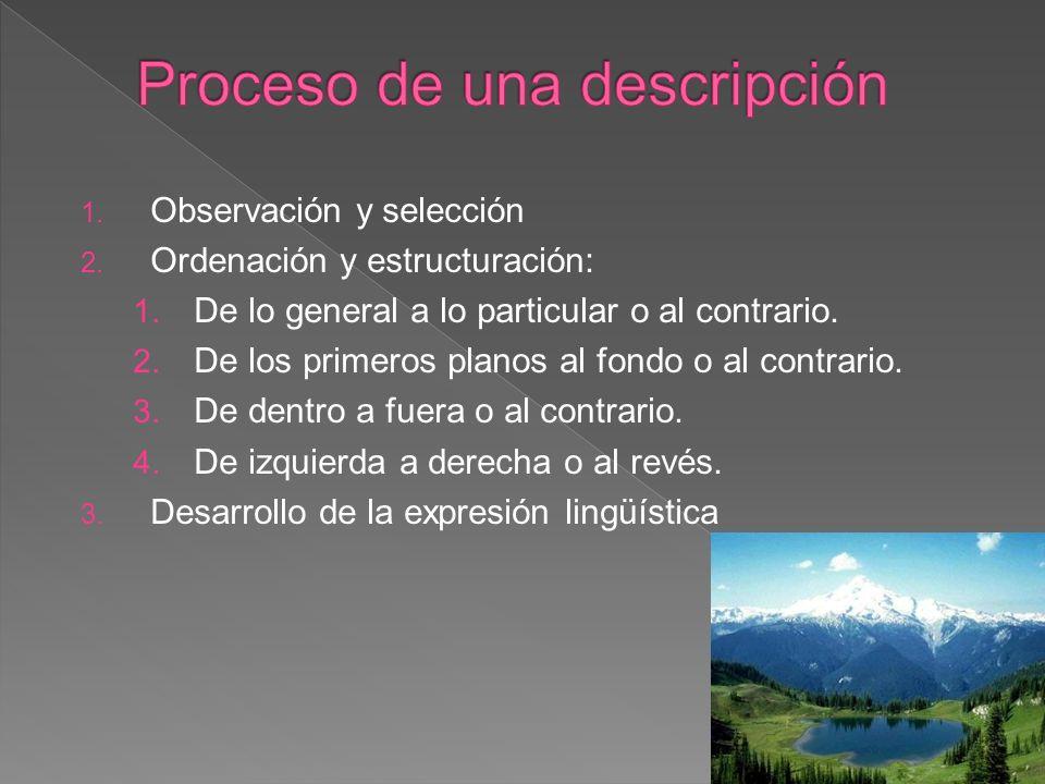 1. Observación y selección 2. Ordenación y estructuración: 1. De lo general a lo particular o al contrario. 2. De los primeros planos al fondo o al co