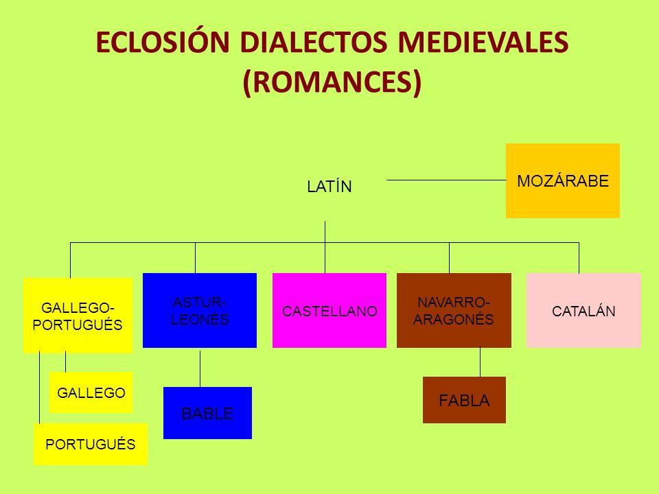 ECLOSIÓN DIALECTOS MEDIEVALES (ROMANCES) LATÍN GALLEGO- PORTUGUÉS ASTUR- LEONÉS CASTELLANO NAVARRO- ARAGONÉS CATALÁN GALLEGO PORTUGUÉS BABLE FABLA MOZ