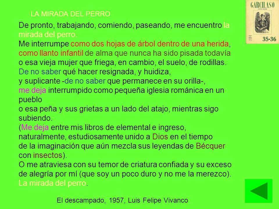 POESÍA SOCIAL: AÑOS 50 Solidaridad con el pueblo La lírica debe ser: –un testimonio –un instrumento de denuncia de la injusticia.