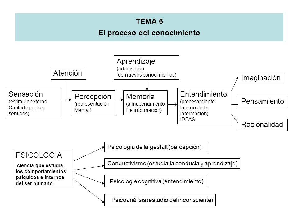 TEMA 6 El proceso del conocimiento Sensación (estímulo externo Captado por los sentidos) Atención Percepción (representación Mental) Entendimiento (pr