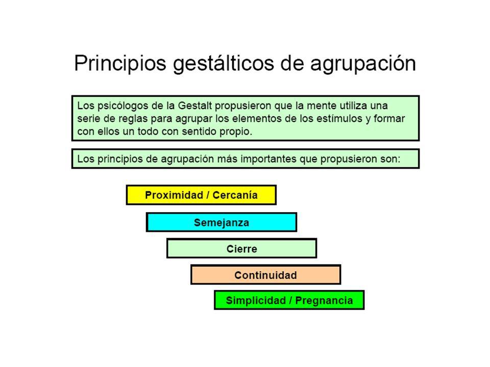 Tipos de aprendizaje Condicionamiento operante (Skinner).