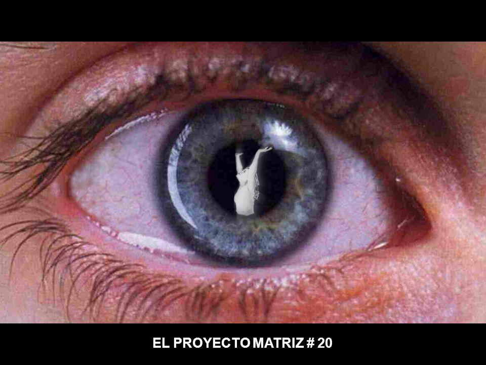 EL PROYECTO MATRIZ # 20