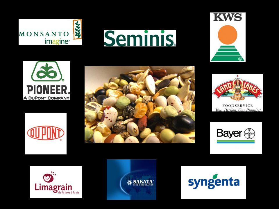 Las 10 compañías (más una) de semillas más grandes del mundo, según el Grupo ETC.