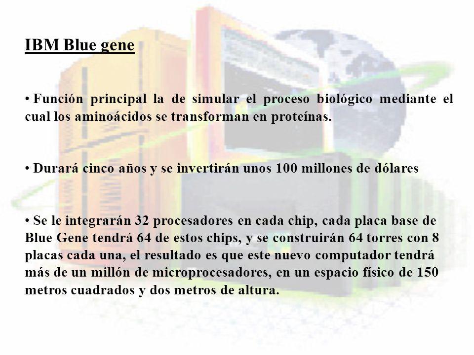 IBM Blue gene Función principal la de simular el proceso biológico mediante el cual los aminoácidos se transforman en proteínas. Durará cinco años y s