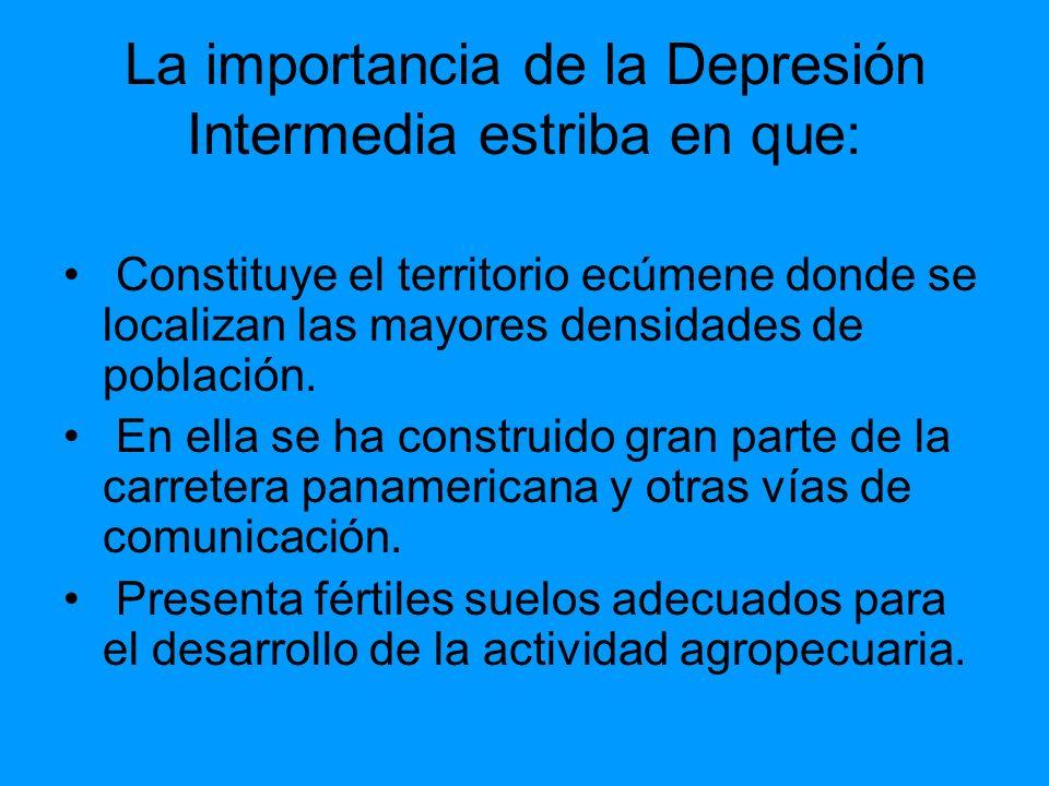 La importancia de la Depresión Intermedia estriba en que: Constituye el territorio ecúmene donde se localizan las mayores densidades de población. En