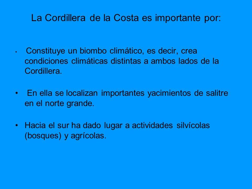 La Cordillera de la Costa es importante por: Constituye un biombo climático, es decir, crea condiciones climáticas distintas a ambos lados de la Cordi