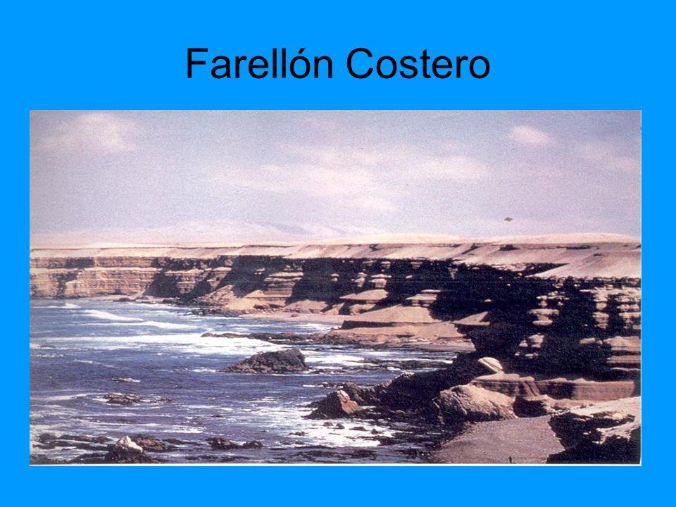 Farellón Costero