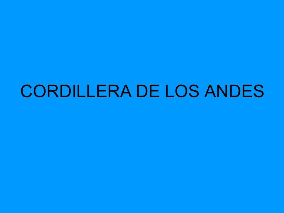 Cordillera de los Andes La Cordillera de los Andes constituye la fachada oriental del territorio.