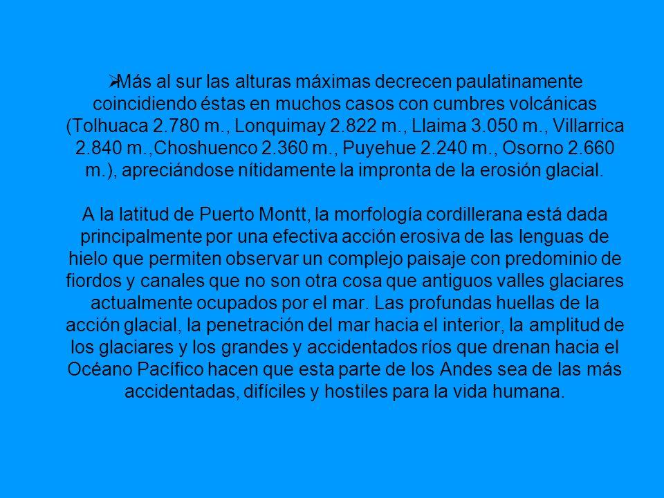 La importancia de las planicies radica en que: Constituye una zona ecúmene, ya que se localizan importantes ciudades y puertos (Arica, Iquique, Coquimbo, La Serena, Valparaíso, Viña del Mar, San Antonio, Talcahuano, Concepción, Valdivia).