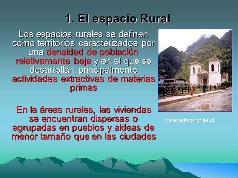 Asentamientos Se distinguen dos tipos de asentamientos de acuerdo a criterios establecidos por el INE (Instituto Nacional de Estadísticas), estos son: