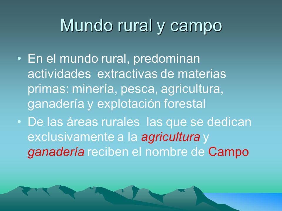 Mundo rural y campo En el mundo rural, predominan actividades extractivas de materias primas: minería, pesca, agricultura, ganadería y explotación forestal De las áreas rurales las que se dedican exclusivamente a la agricultura y ganadería reciben el nombre de Campo