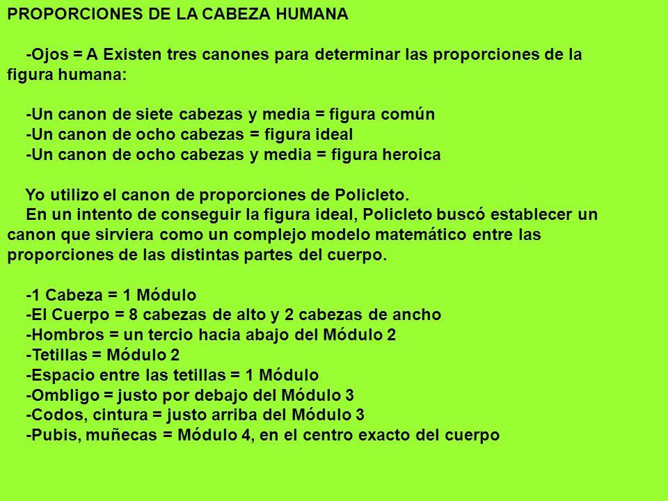 PROPORCIONES DE LA CABEZA HUMANA -Ojos = A Existen tres canones para determinar las proporciones de la figura humana: -Un canon de siete cabezas y med
