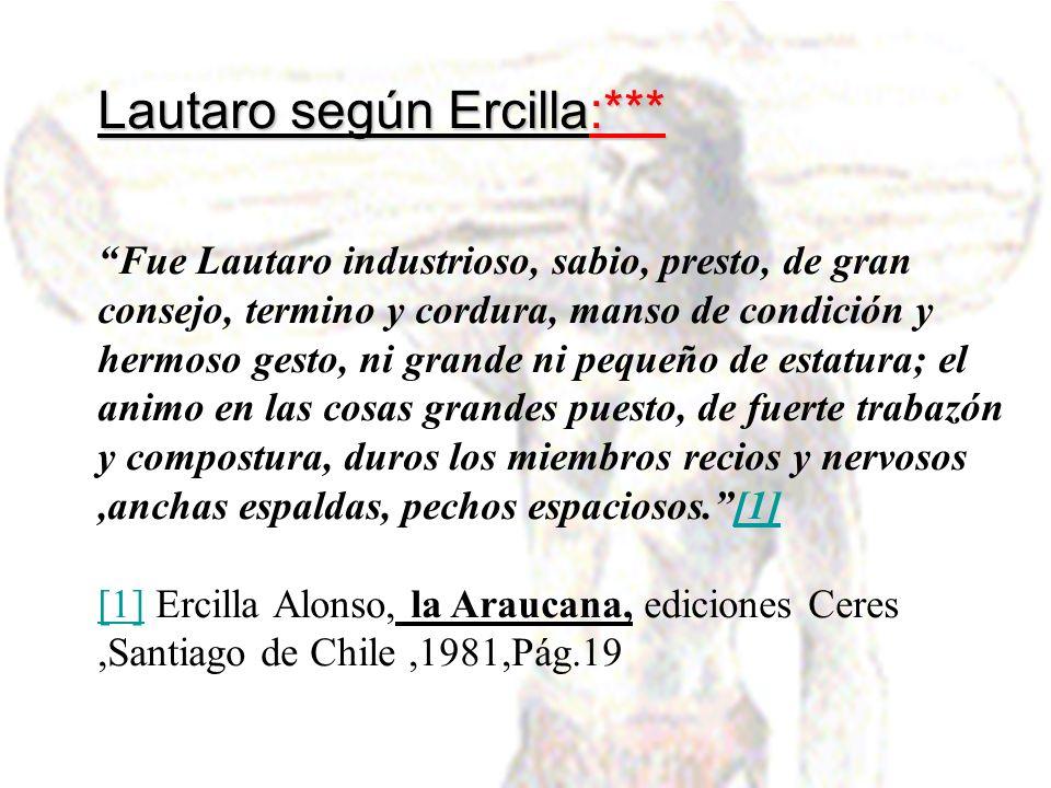 Lautaro según Ercilla:*** Fue Lautaro industrioso, sabio, presto, de gran consejo, termino y cordura, manso de condición y hermoso gesto, ni grande ni