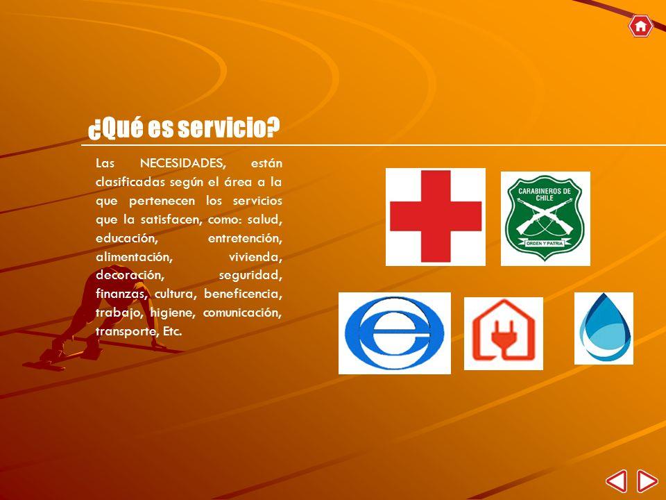 Las NECESIDADES, están clasificadas según el área a la que pertenecen los servicios que la satisfacen, como: salud, educación, entretención, alimentac