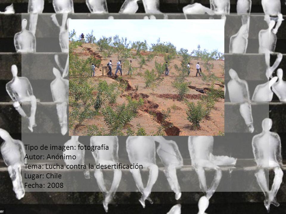 . Tipo de imagen: fotografía Autor: Anónimo Tema: Lucha contra la desertificación Lugar: Chile Fecha: 2008
