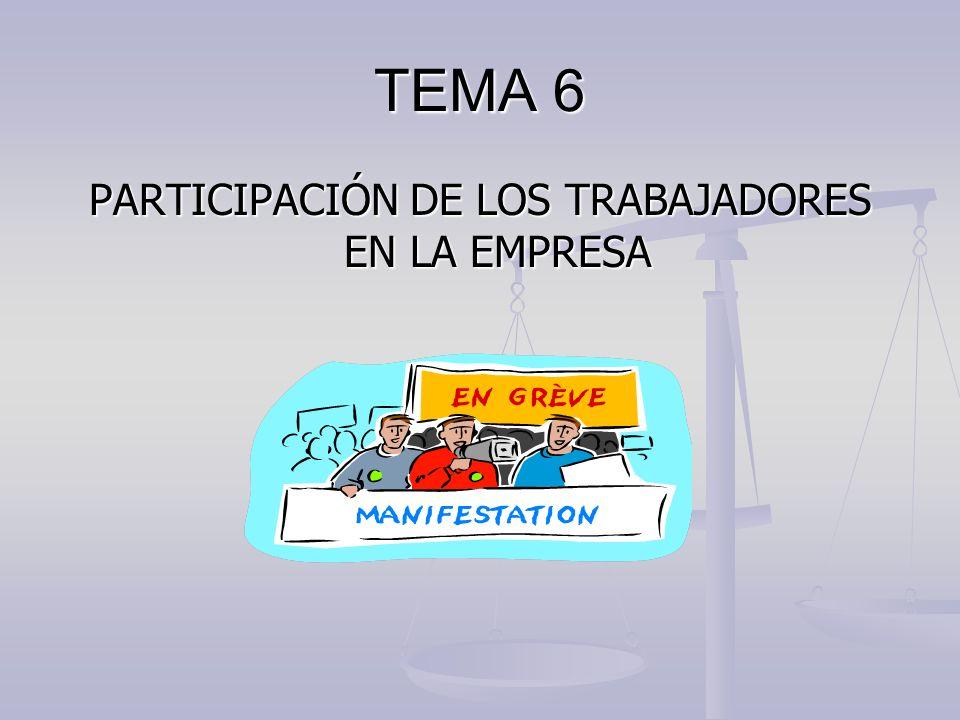 TEMA 6 PARTICIPACIÓN DE LOS TRABAJADORES EN LA EMPRESA