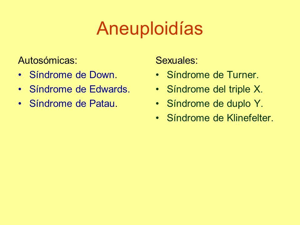 Aneuploidías Autosómicas: Síndrome de Down. Síndrome de Edwards. Síndrome de Patau. Sexuales: Síndrome de Turner. Síndrome del triple X. Síndrome de d