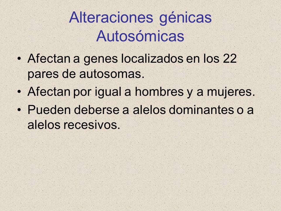 Alteraciones génicas Autosómicas Afectan a genes localizados en los 22 pares de autosomas. Afectan por igual a hombres y a mujeres. Pueden deberse a a