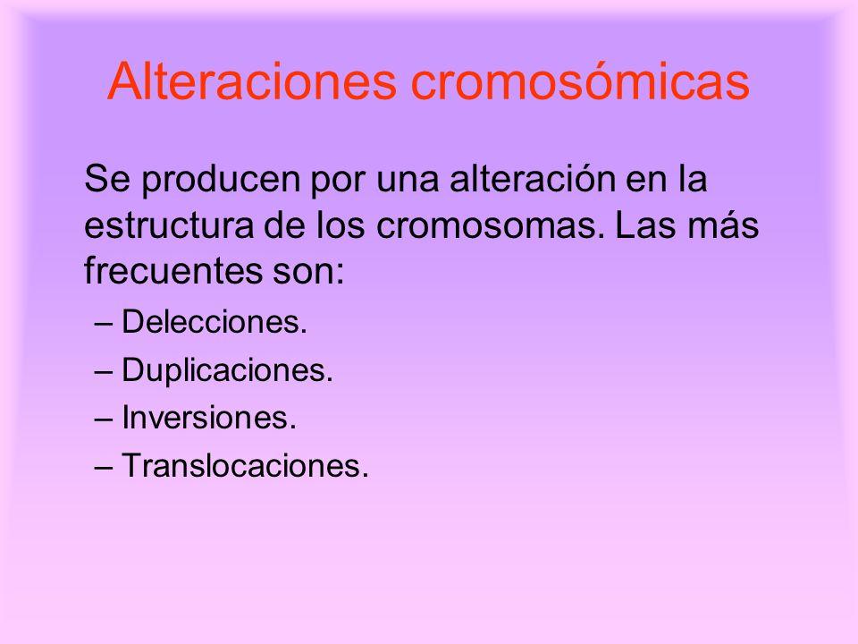 Alteraciones Cromosomicas Alteraciones Cromosómicas se
